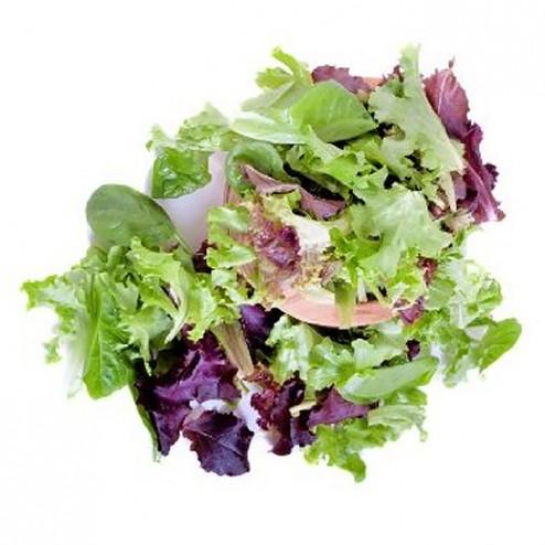 Salad - Mesclun